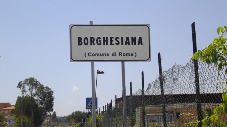 Borghesiana